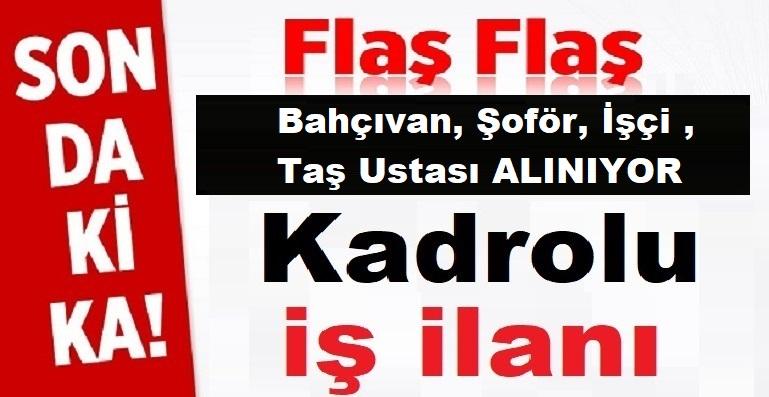 Datça Belediyesi Daimi Bahçıvan, Şoför, İşçi ,Taş Ustası Alıyor
