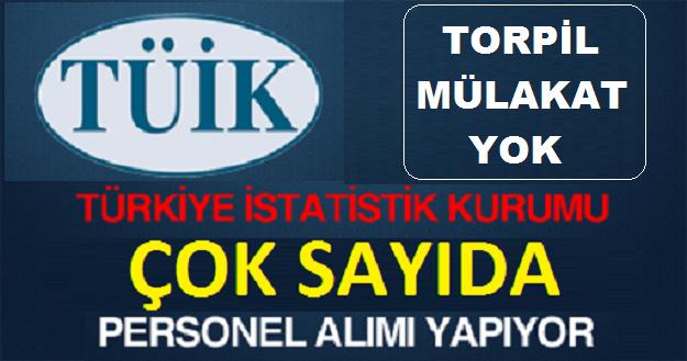 Türkiye İstatistik Kurumu Engelli ve Eski Hükümlü Kamu Personeli Alımı