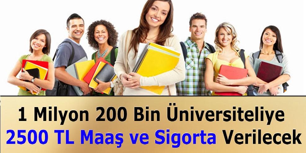 1 Milyon 200.000 Üniversiteliye 2500 TL Maaş ve Sigorta Verilecek