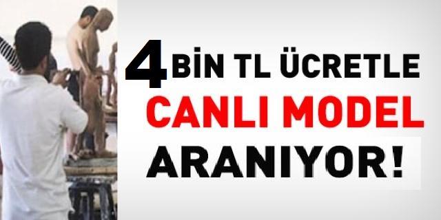 Erciyes Üniversitesi Canlı Model kadrosu için 3 personel istihdamı yapacak.