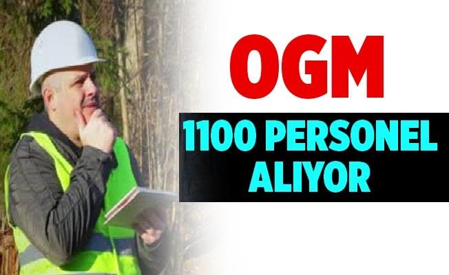 Orman Genel Müdürlüğü OGM 1150 Personel Alıyor