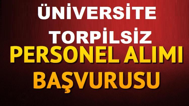 Üniversite çok sayıda Akademik Personel ilanları 2020