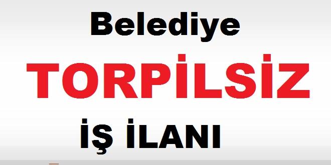 Erzincan Yalnızbağ Belediyesi Çöpçü ilanı kamudan kariyer