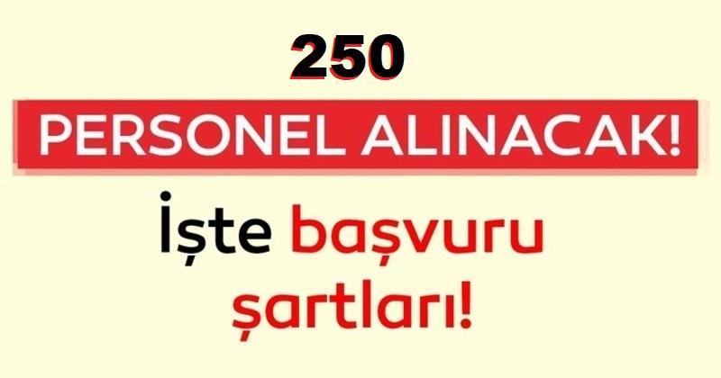 4/D Daimi Sürekli 250 işçi Alınacaktır