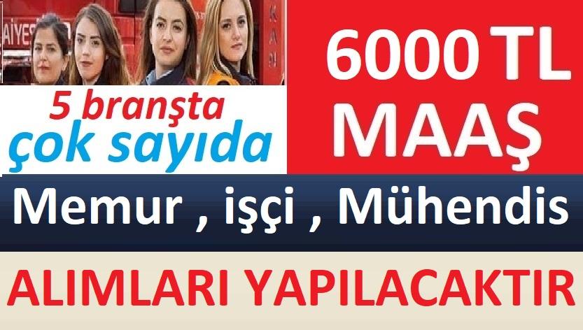 Aydın Koçarlı Belediyesi Ziraat Mühendisi , Asistan , Muhabir ve işçi Alacaktır