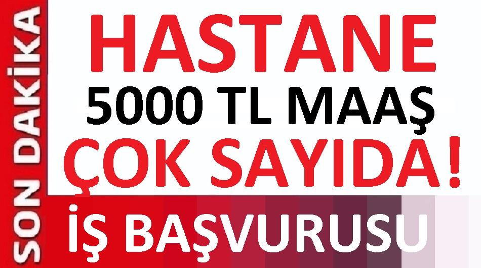 Van Yüzüncü Yıl Üniversitesi Kadrolu 50 işçi Alacaktır