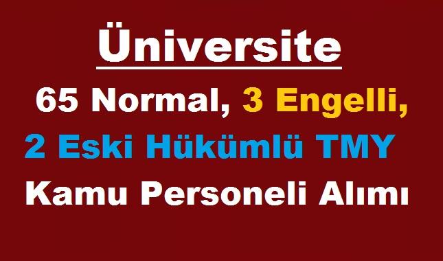 Üniversite 65 Normal,3 Engelli, 2 Eski Hükümlü TMY Kamudan Kariyer Personeli Alımı