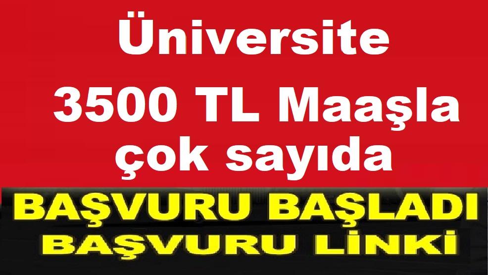 Bozok Üniversitesi 3500 TL Maaşla KPSS ile Çok Sayıda Devlet Memuru Alımı