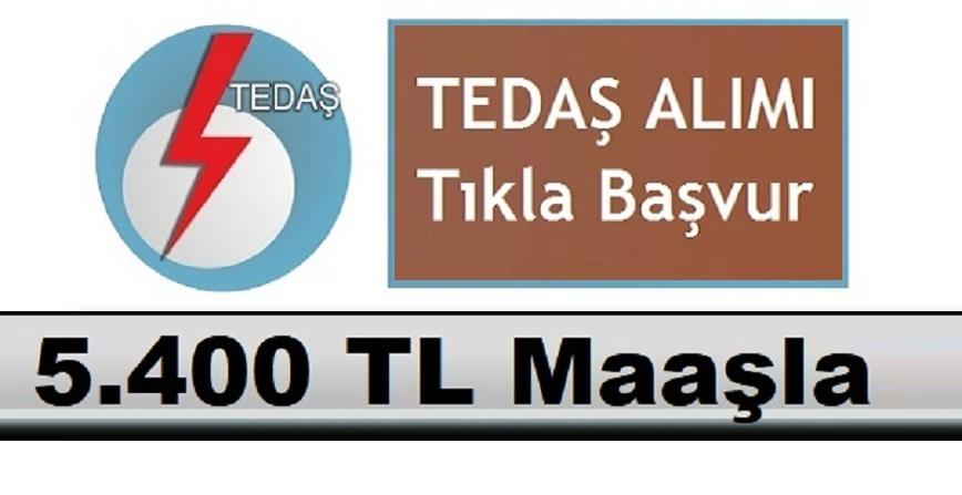 5 Bin 400 TL Maaş ile TEDAŞ Daimi Kamudan Kariyer Personeli Alımı