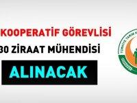 İzmir Ziraat Odası 30 kooperatif görevlisi ve 30 mühendis alacak