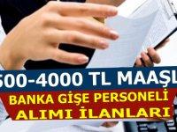 Banka personel alımları - Banka Gişe Personeli Alım İlanı