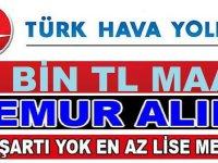 THY Türk Hava Yolları Düz Memur iş ilanları 2020