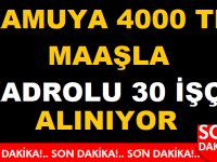 TTK Türkiye Taş Kömürleri sözlü sınavla 30 nitelikli işçi alıyor