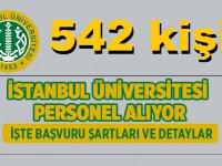 İstanbul Üniversitesi Haziran ayı 542 Kişilik DEV iş ilanı Yayınlamıştır!