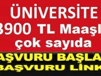 Mehmetbey Üniversitesi yeni işçi ve 13 personel alacak.