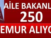 250 adet Sosyal Hizmetler Uzman Yardımcısı alımı yapılacaktır.