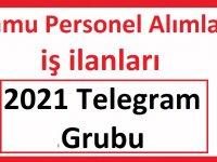 İşkur iş ilanları Kamu Personeli Alımları 2021 Telegram Grubu