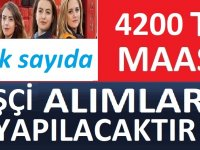 Denizli Büyükşehir Belediyesi,Vasıfsız İşçi, 8 İşçi Alacak.