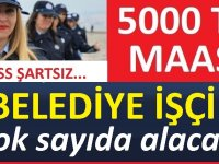 Belediye şirketi Mayeb Organizasyon 35 işçi Alacaktır
