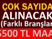 Belediye Aşçı, Vasıfsız Eleman, 46 İşçi Alacak.