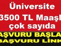 Marmara Üniversitesi KPSS ile Büro Memuru ve Avukat Alıyor