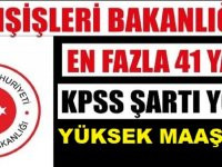Dışişleri Bakanlığı KPSS'siz Kamu Personeli Alıyor! Yüksek Maaşla